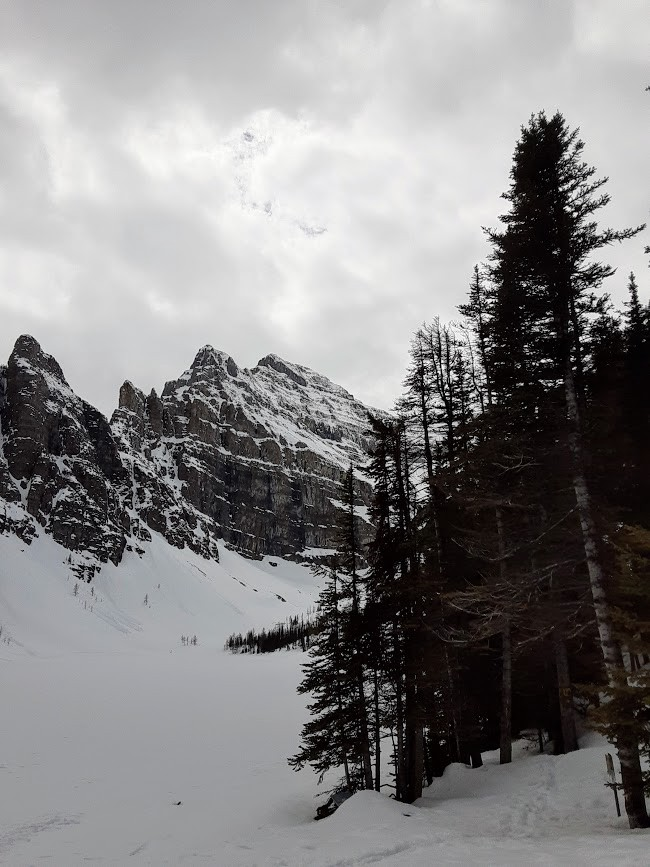 A gloomy mountain and snow covered lake. Surrounded by dimly lit fur trees.