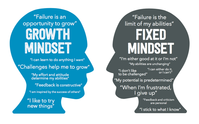 Image result for growth mindset fixed mindset