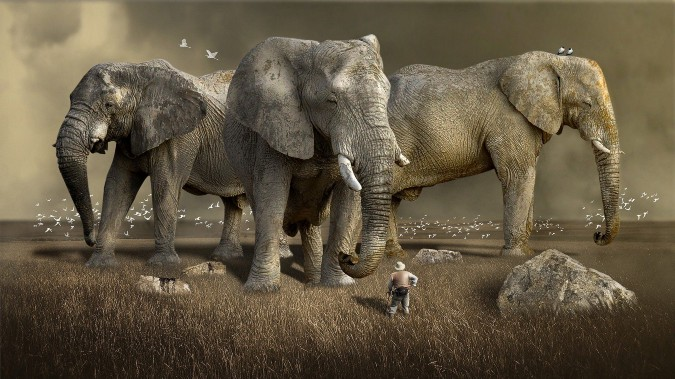 A small man in a field facing three giant elephants.
