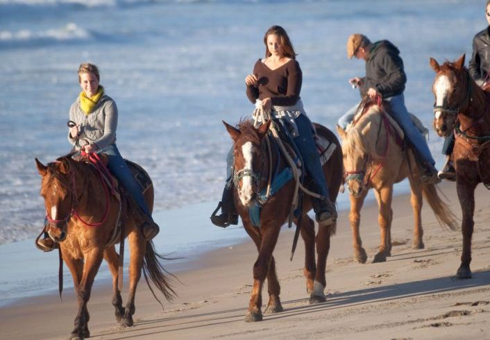 The Website Another Side Of San Go Tours Suggests Either Horseback Riding Along Beach Or A Trail Ride