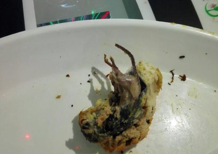 Qatar Restaurant Closed After Rodent Found In Food Doha News Medium