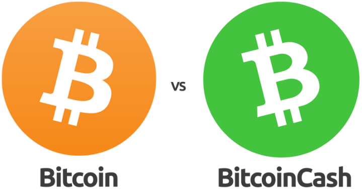 Image result for bitcoin vs bitcoin cash