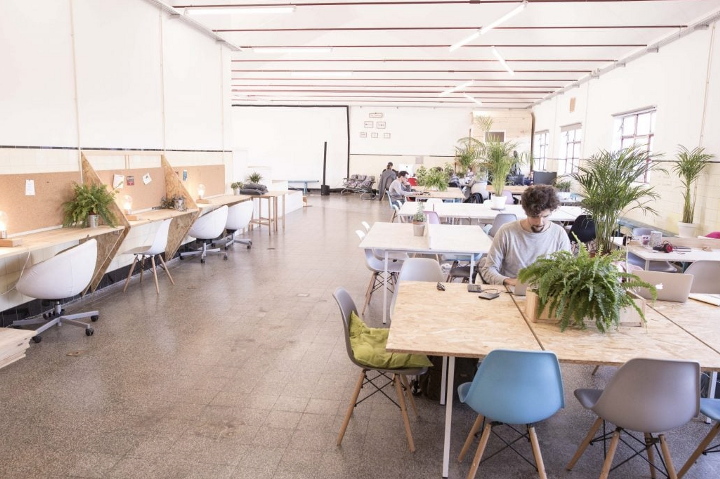 Large coworking room filled with plants at Impact Hub