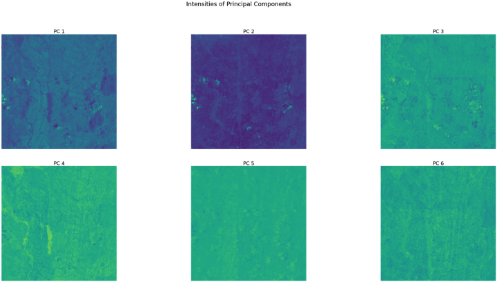 6 principal components identified in the Sentinel-2 image.