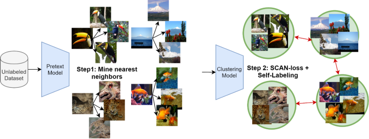 """Source: Van Gansbeke, Wouter, et al. """"Scan: Learning to classify images without labels."""" European Conference on Computer Vision. Springer, Cham,2020."""