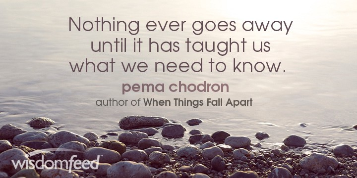 Pema Chodron Nothing Ever Goes Away Quote Meme WisdomFeed Medium Adorable Pema Chodron Quotes