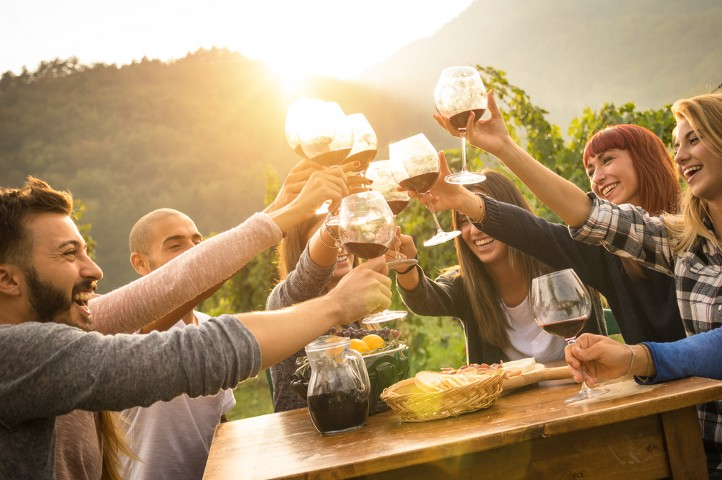 Group of friends cheering with wine