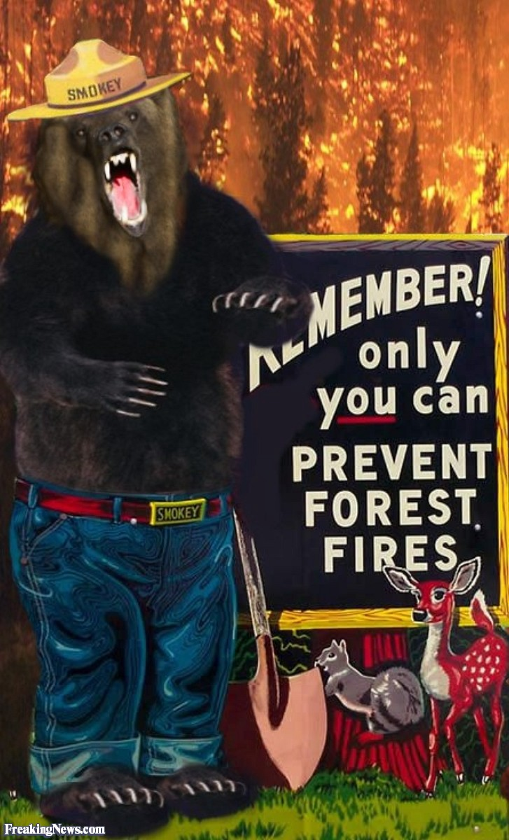 did smokey the bear cause the canadian wildfires homeland