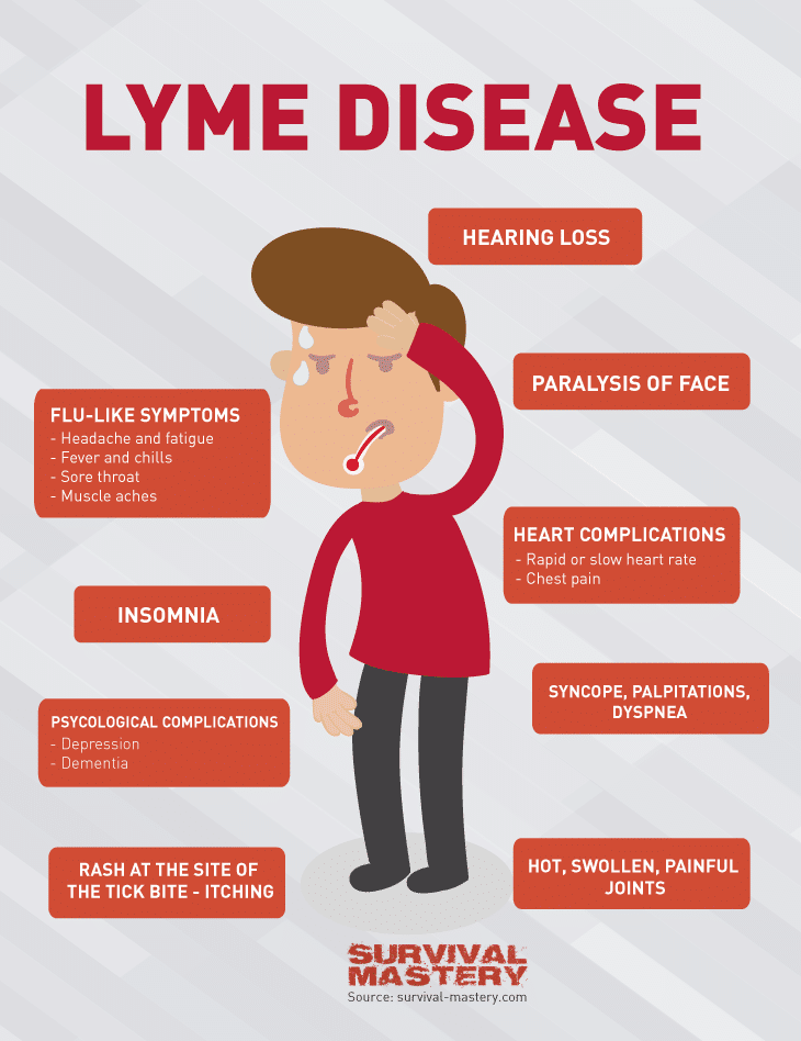 faster eft and lyme disease \u2013 robert smith \u2013 medium*picture courtesy of survival mastery com med health lyme disease html