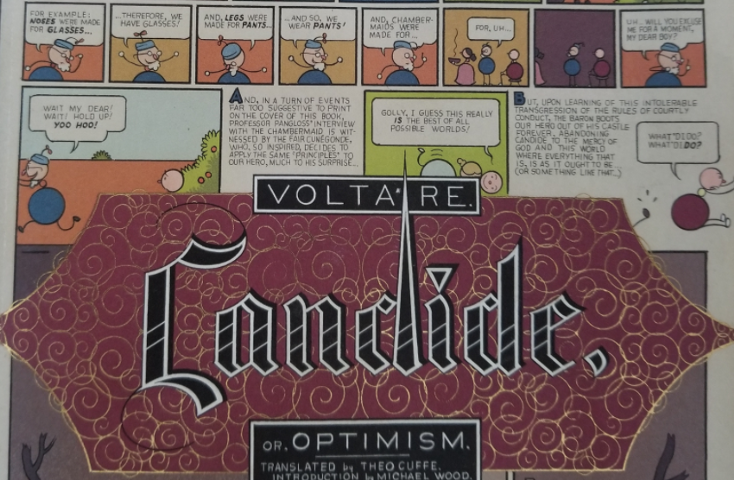 a literary analysis of philosophies in candide by voltaire A short voltaire biography describes voltaire's life, times, and work also explains the historical and literary context that influenced candide.