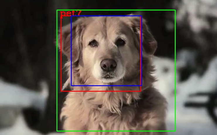 Deep Learning: Recognise your home pets!