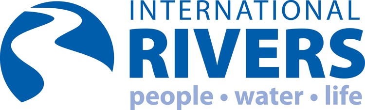 Image result for internationalrivers logo