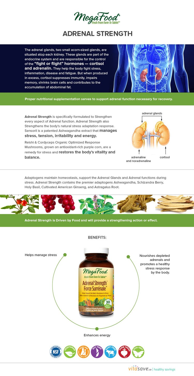 Megafood Adrenal Strength Can Restore Your Adrenal Gland Functions