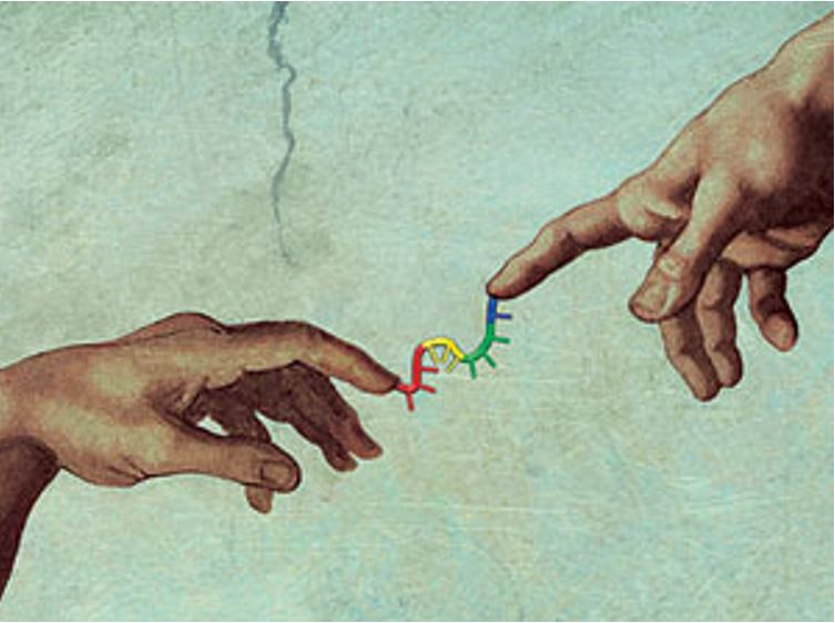 HUMAN GENOME PROJECT: ETHICS.