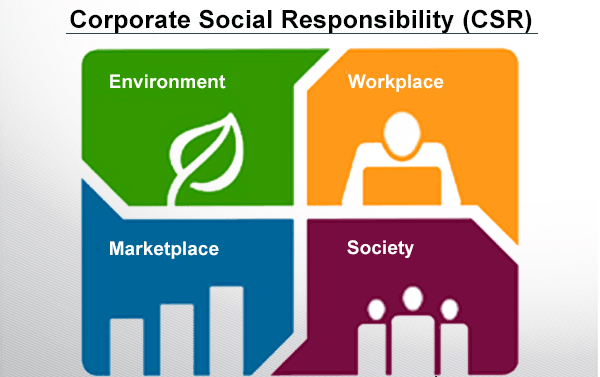 company q social responsibility essay Sample of the social responsibility of business essay (you can also order custom written the social responsibility of business essay.