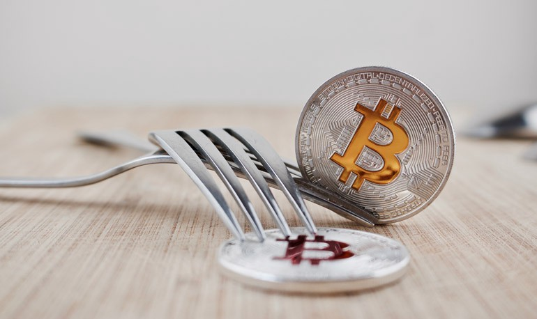 cryptocurrency fork dates
