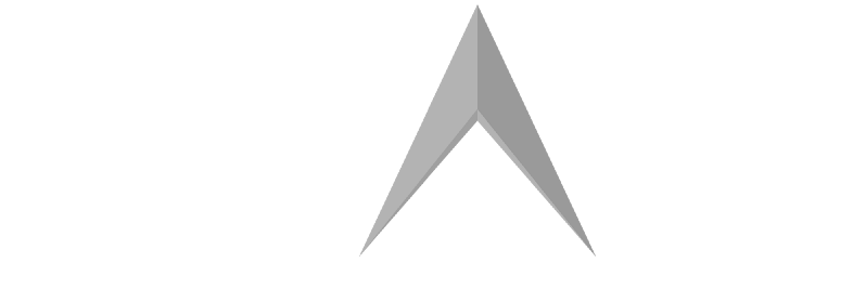 Millennial Action Project