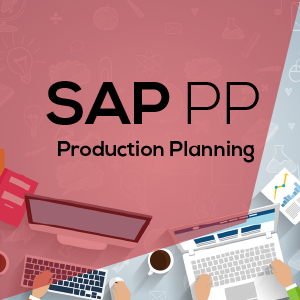Project remote support on SAP PP provided by GroNysa