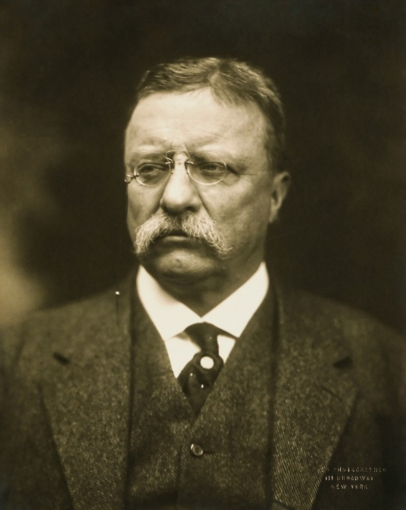 """T Roosevelt"" by Pach Brothers (photography studio) — Licensed under Public Domain via Wikimedia Commons"