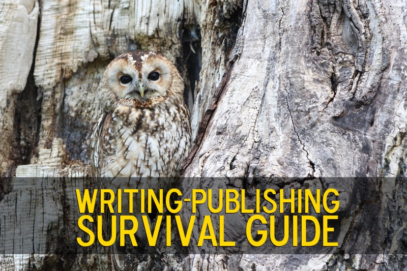 survival guide essay article Ws freshman survival (expository) the principal has asked for student essays for next year's freshman survival guide write an article that compares and contrasts eighth grade with ninth grade.