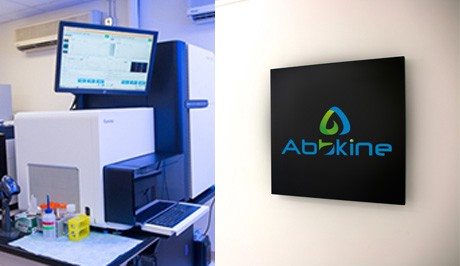 Abbkine Next Generation Sequencing service