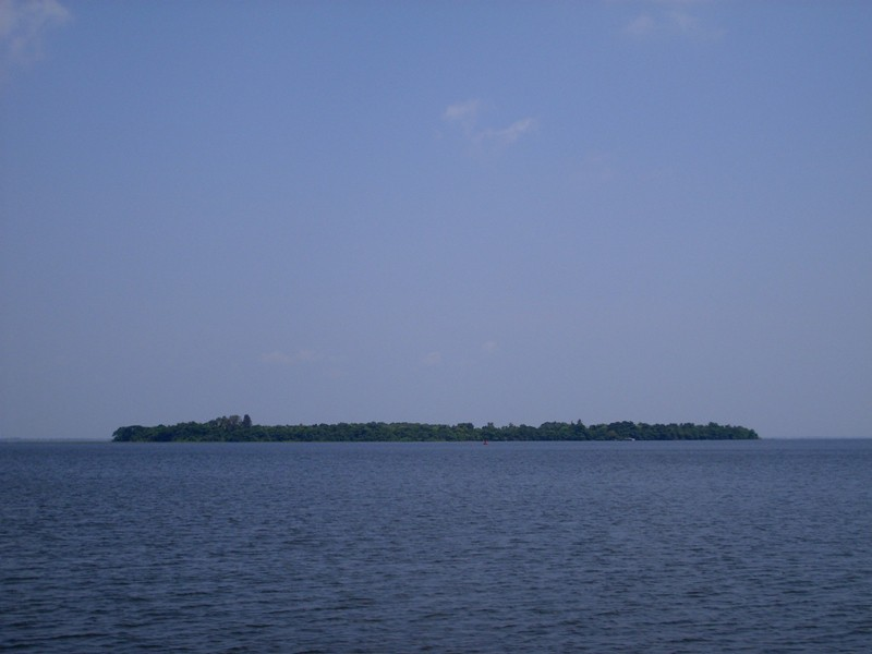 Pathiramanal island in backwaters