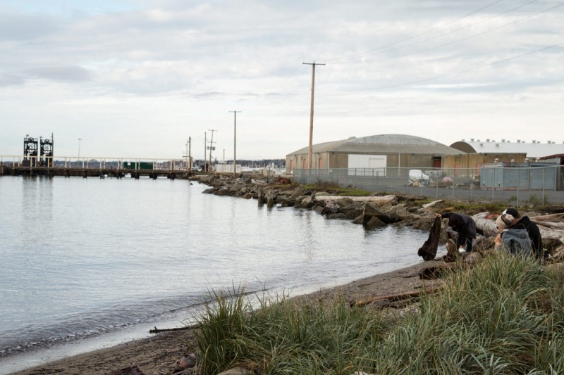 Glass Beach and the neighboring site of a former municipal landfill will undergo cleanup and renovation to create Cornwall Beach Park, which is projected to be Bellingham's largest waterfront park.