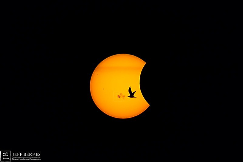 Photograph Partial Solar Eclipse - October 23rd, 2014 by Jeff Berkes on 500px