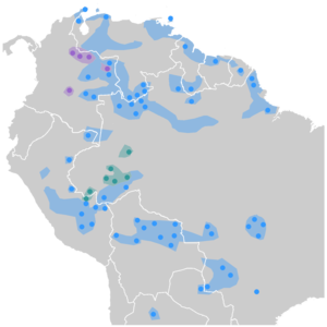 Arawakan languages (blue dots), Guajiboan languages (violet dots), and Arauan languages (green dots). Paler areas represent probable extension at the time of contact