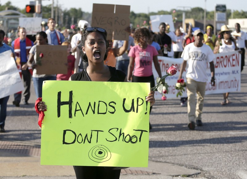 Essay on police brutality in america