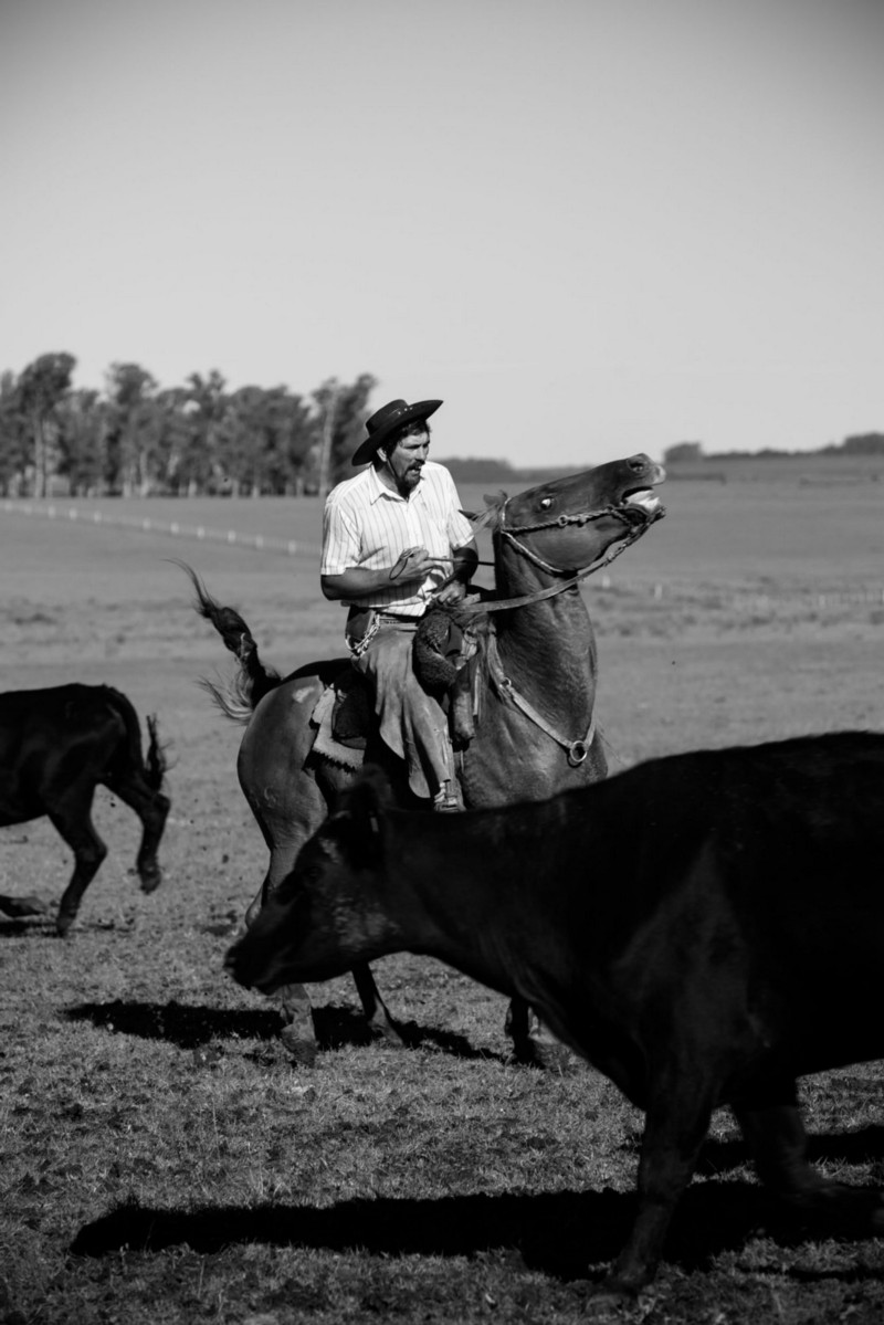 Uruguay's traditional culture is changing. Not all younger gauchos are content with a hard life in isolated communities when more money can be earned driving a tractor elsewhere. ©James Fisher 2017 All Rights Reserved
