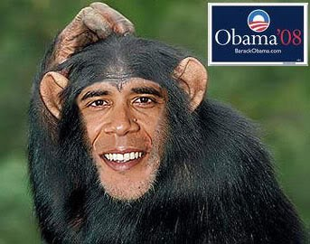 Image result for OBAMA LOOK LIKE gorillas CARTOON