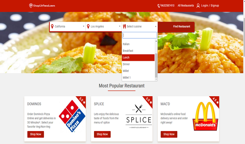 Online food ordering marketplace-A successful business formula