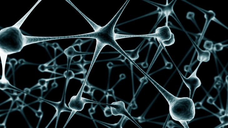 Neural Networks for Dummies: a quick intro to this fascinating field