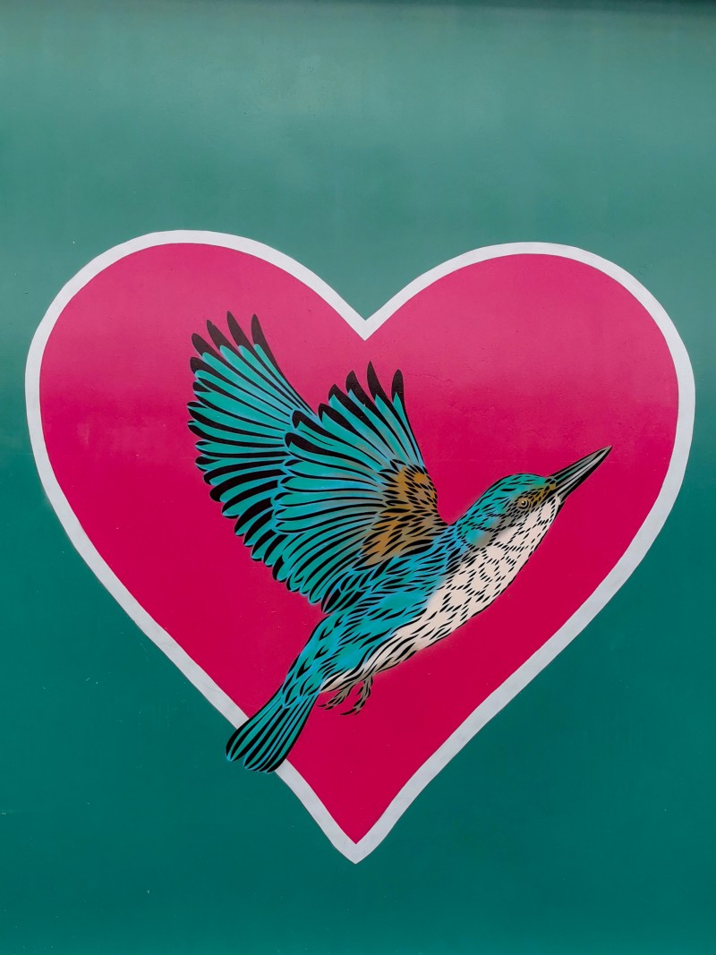 A beautiful hummingbird picture inside of a heart