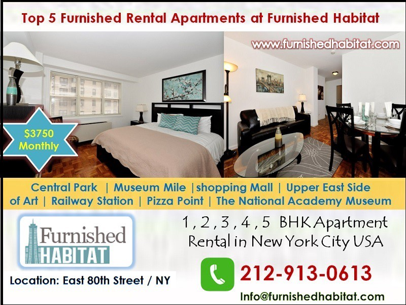 48 BHK Rental Apartment In Upper East Side In NYC Central Park Magnificent 5 Bedroom Apartment Nyc Painting