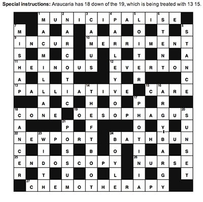 100 page essay hyph crossword