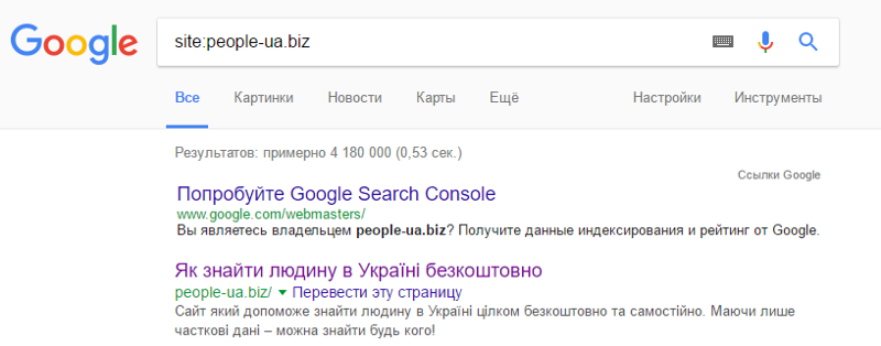 How Google Indexing a very Large Websites