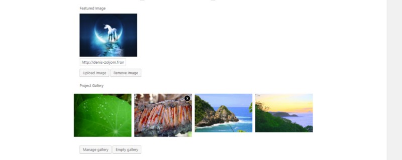 Image upload meta box with images