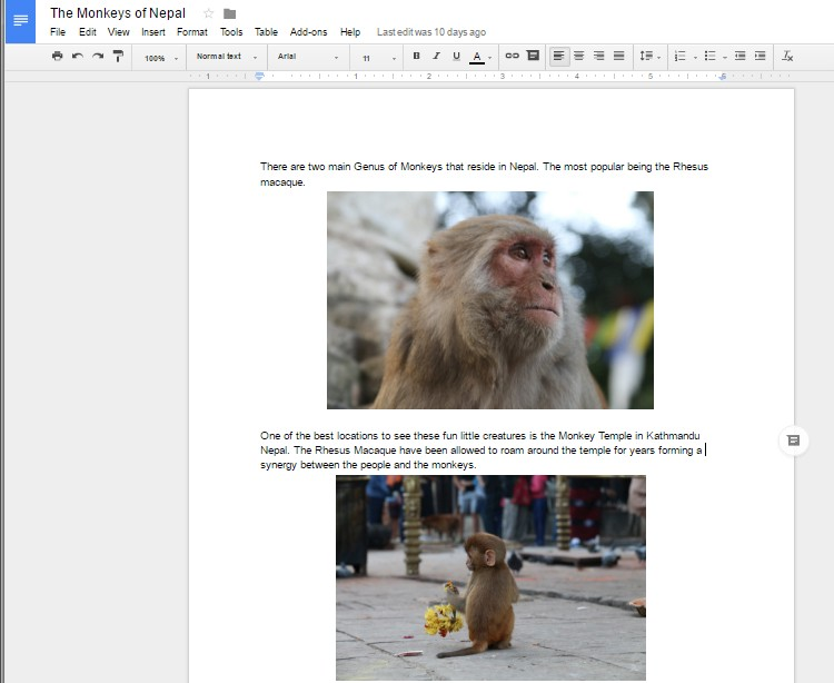 can you save as pdf in google docs