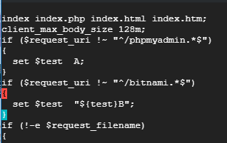 insert client_max_body_size to nginx-app.conf