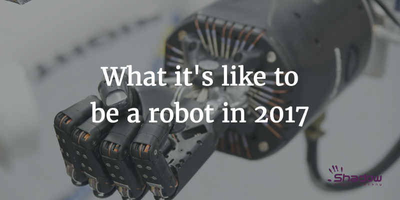 What it's like to be a Robot in 2017