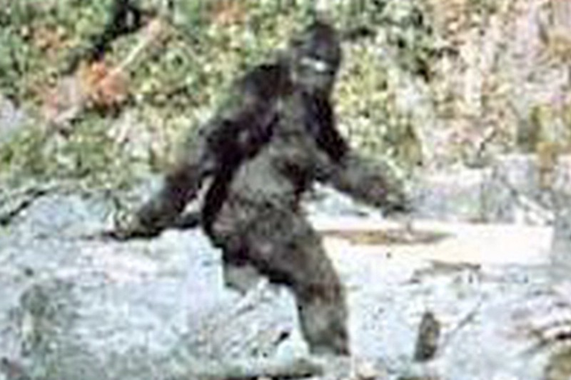 A frame from the Patterson-Gimlin film allegedly shows a female bigfoot.