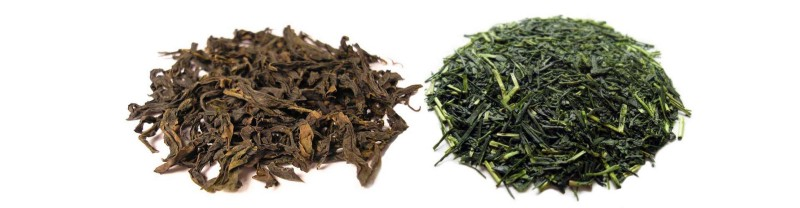 Oolong tea vs. Green tea