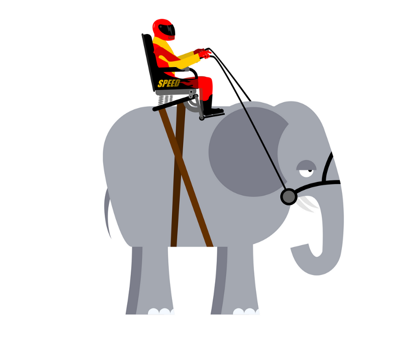 Change Management - a rider on top of an elephant