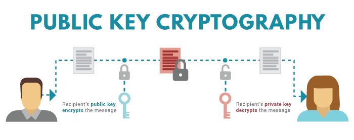 how do i create a cryptocurrency wallet