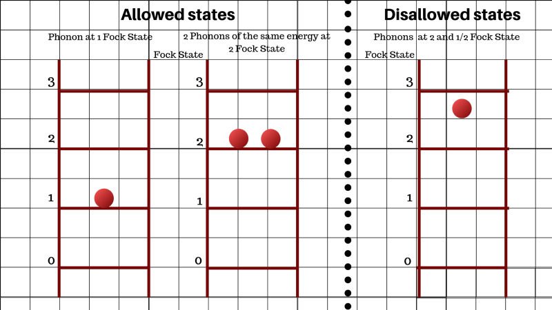 Picturing the Fock states—the energy levels of phonons—as rungs on a step ladder. A phonon can exist at step 1 or 2, but not at step 2 and 1/2.(Lea)