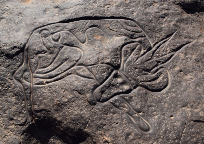 A stone-age Berber rock carving in Libya, perhaps as old as 9,000 BCE