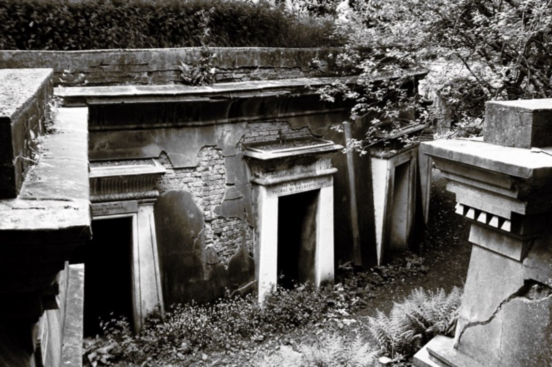 The Circle of Lebanon at Highgate Cemetery (credit: John W. Schulze/flickr)