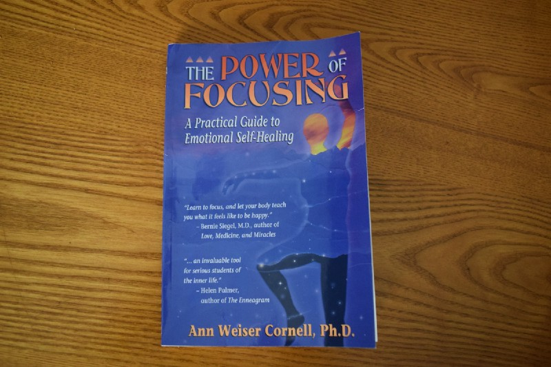 The Power of Focusing Book